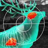 Иконка Let's Hunt: Hunting Games